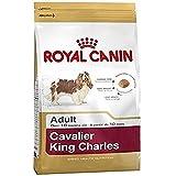 ROYAL CANIN Cavalier King Charles Adult - 3 kg