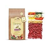 Terra Canis Wild, Gemüse, Obst & Kokosmehl - Canireo Trockenfutter, 5kg I Premium Hundefutter in 100% Lebensmittelqualität Aller...