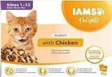 IAMS Delights Kitten Nassfutter - Multipack Katzenfutter mit Huhn in Sauce, hochwertiges Futter für Junior Kätzchen von 1-12...