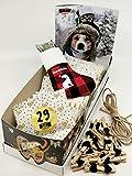Qchefs Adventskalender Hund 2021  Hunde öffnen Türchen selbst   Belohnt & Zähne geputzt   Do it Yourself Look   NUR Natur &...