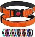 Joytale Reflektierend Hundehalsband,Einstellbare für Training Halsband aus Nylon mit Gepolstertem für Kleine Hunde,Orange,S