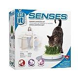 Catit Design Senses Gras Garten, Katzengras