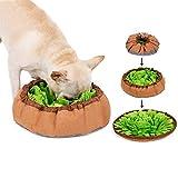 inRobert Schnüffelteppich für Hunde Schnüffelrasen Intelligenzspielzeug Schnüffelteppich Puzzle Spielzeug Haustier Matte...